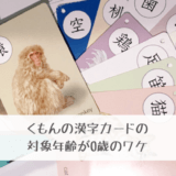 公文の漢字カードの対象年齢が0歳のワケ