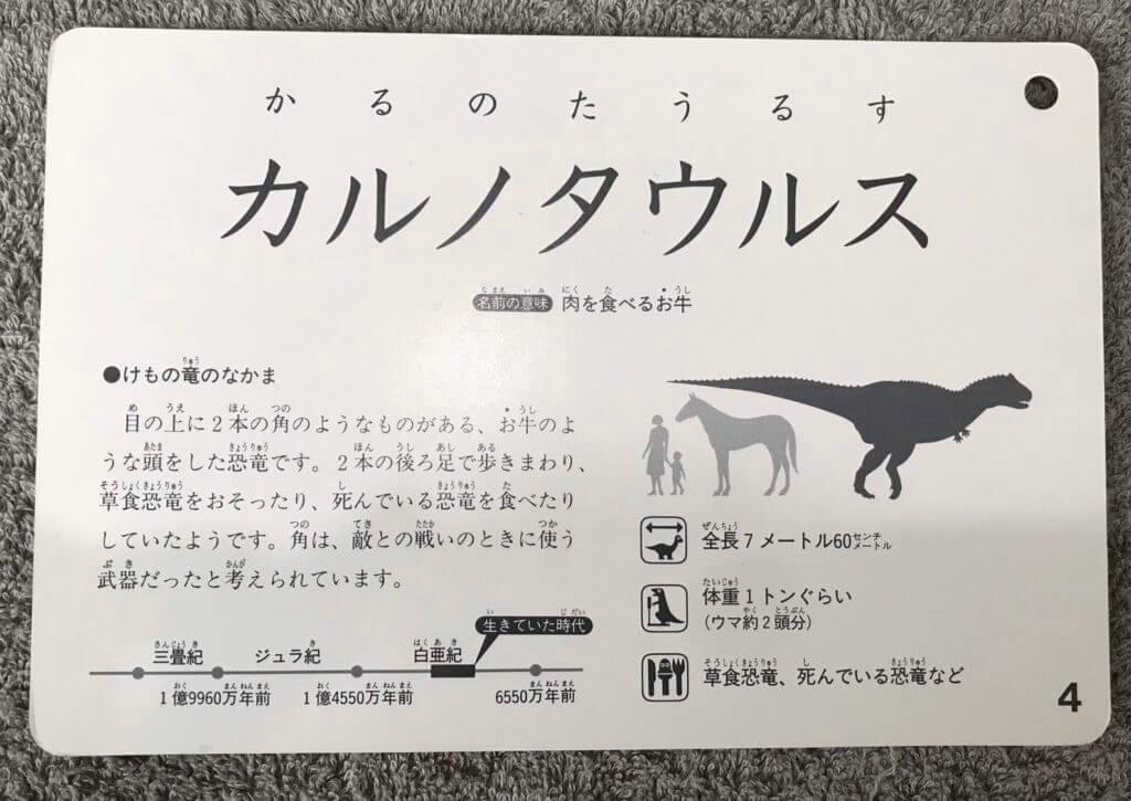 おすすめ恐竜カード裏面