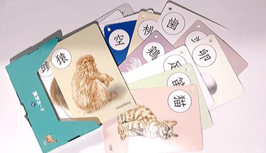 【くもん 漢字カード レビュー 】脳の力を高める公文式カード